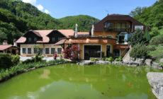 Villa Zelenjak - Ventek