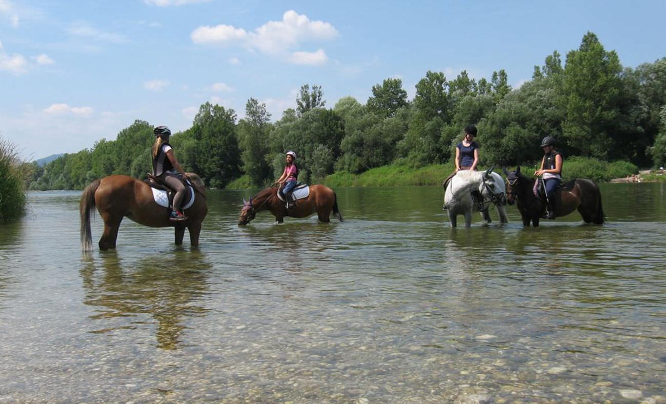 Šola jahanja in trening konj, Mojca Kolenc