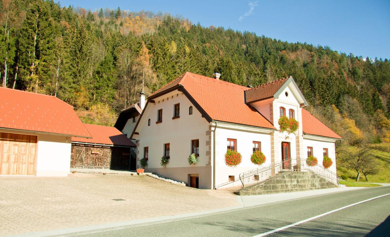 Turistična kmetija Bukovje